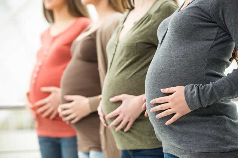 fertility lawyers